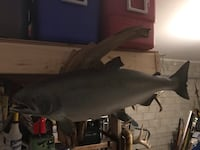 Salmon mounted on wood