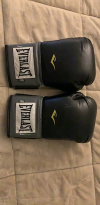 Everlast Pro Style training gloves 16 oz Arlington, 22203