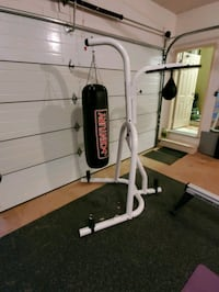 Heavy Bag and speed bag Boxing unit