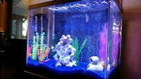 60 gallon fish tank with all accessories and glo f Windsor, 80550