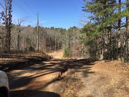 Residential Land for Sale in Bigelow, Arkansas/ Quiet and Gorgeous/ No Zoning/ $4500 Down