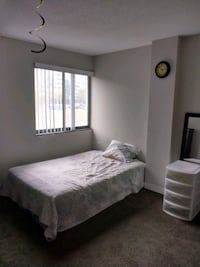 ROOM For Rent. Sharing apartment.