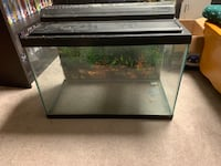 20 gallon Hagen Fish Tank With Filters and Accessories Edmonton, T6K 3W9