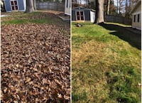• leaf removal  • gutter cleaning / Repair  • pressure washing  • and much more Fairfax Station