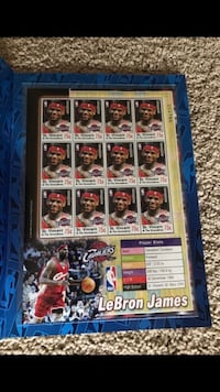 LeBron James Stamp Sheet