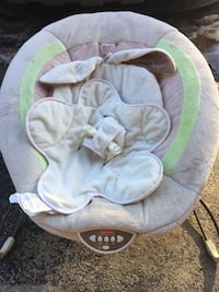 baby's gray and green bouncer Warner, 03278
